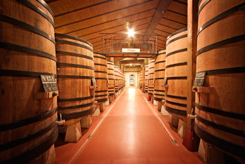 23.sala-fermentacion