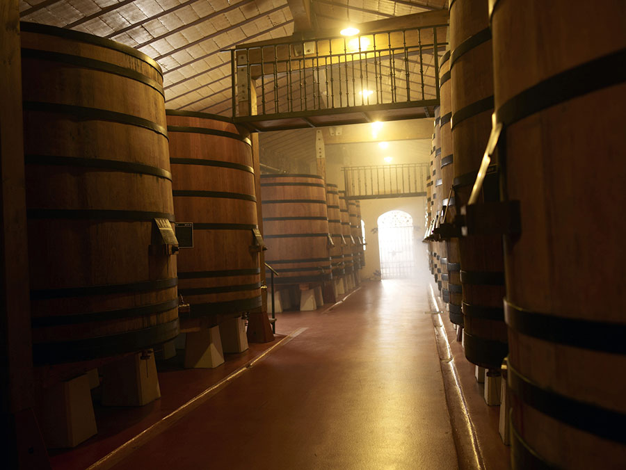 Guided Tour · The winery inside