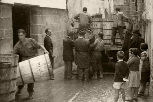 17.vendimia-1945